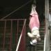 志摩紫光「ドキュメントSM吊り乱舞」